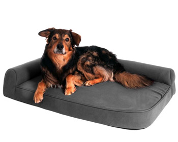 Hundebett Ortho Visco <b>grau</b> ab
