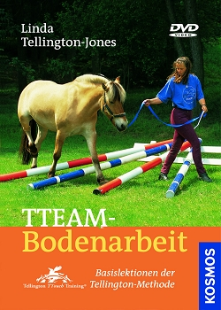 TTeam-Bodenarbeit - DVD